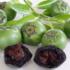 Kép 3/3 - Csokoládépuding  gyümölcs, Fekete datolyaszilva